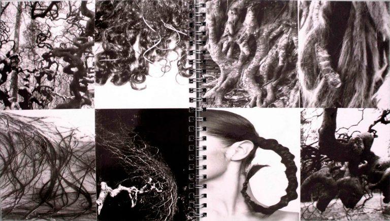 """dossier tendance """"L'analogie entre l'homme et l'arbre"""""""