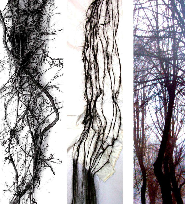 """mur végétal """"L'analogie entre l'homme et l'arbre"""""""