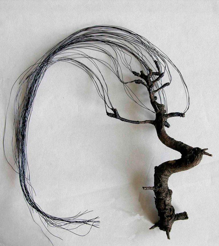 """simulation produit """"L'analogie entre l'homme et l'arbre"""""""
